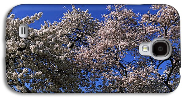 Cherry Blossom In St. Jamess Park, City Galaxy S4 Case by Panoramic Images
