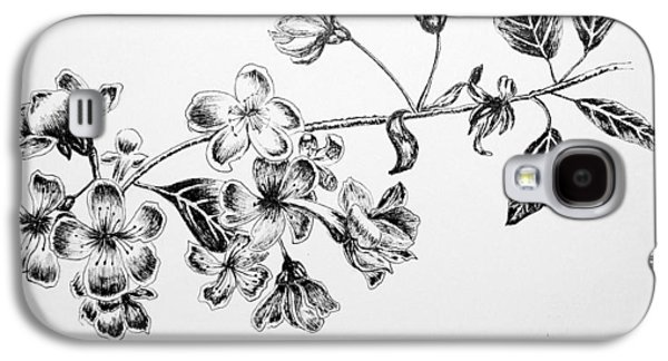Cherry Blossoms Drawings Galaxy S4 Cases - Cherry Blossom Galaxy S4 Case by Rahul Jain