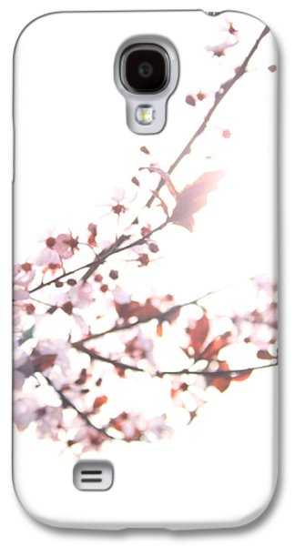 Cherry Blossoms Pyrography Galaxy S4 Cases - Cherry Blossom Spring II Galaxy S4 Case by KaetheJo Binder