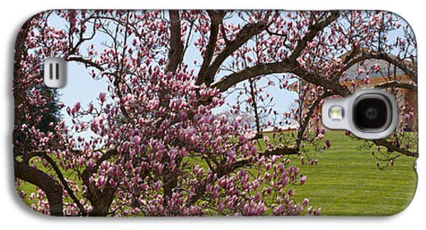 Cherry Blossoms Galaxy S4 Cases - Cherry Blossom Trees At The Gravesite Galaxy S4 Case by Panoramic Images