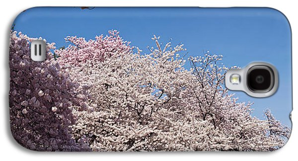 Cherry Blossom Trees In Bloom Galaxy S4 Case by Panoramic Images