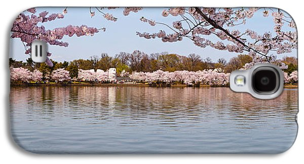 Cherry Blossoms Galaxy S4 Cases - Cherry Blossom Trees Near Martin Luther Galaxy S4 Case by Panoramic Images