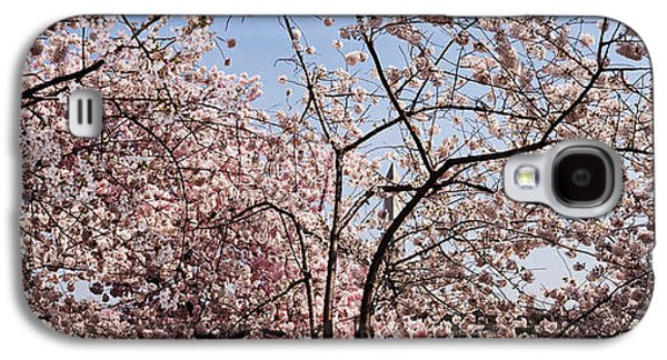 Cherry Blossom Trees Galaxy S4 Case by Panoramic Images