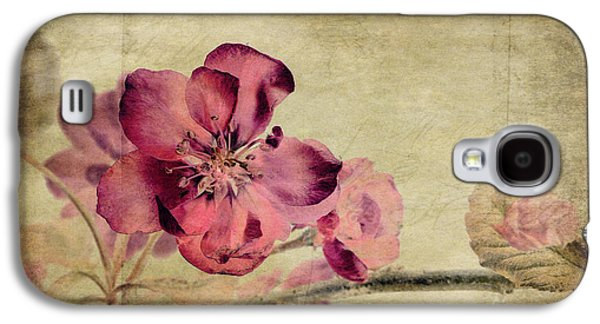 Stamen Digital Galaxy S4 Cases - Cherry Blossom with Textures Galaxy S4 Case by John Edwards