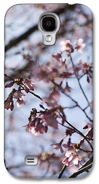 Cherry Blossoms Pyrography Galaxy S4 Cases - Cherry Blossoms Black Galaxy S4 Case by Cindy Dittfield