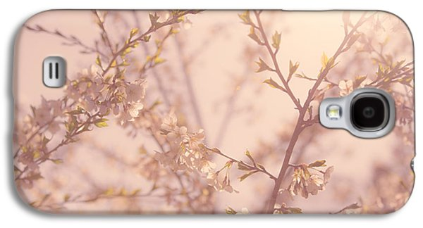 Cherry Tree Galaxy S4 Cases - Cherry Blossoms Galaxy S4 Case by Diane Diederich