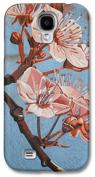 Cherry Blossoms Drawings Galaxy S4 Cases - Cherry Blossoms Galaxy S4 Case by Mary Strehl