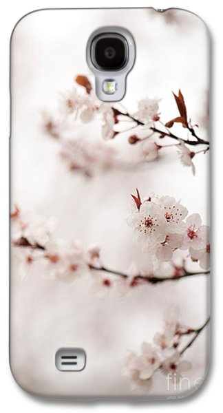 Rosaceae Galaxy S4 Cases - Cherry Plum Blossom Galaxy S4 Case by Anne Gilbert