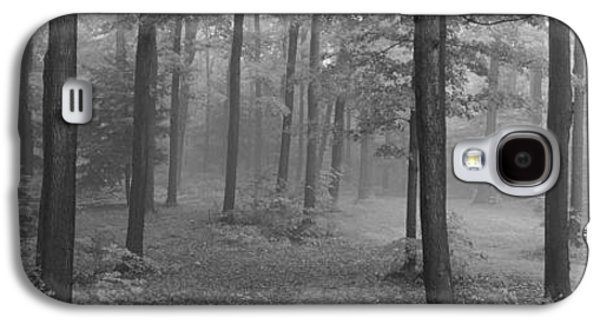 Forest Floor Galaxy S4 Cases - Chestnut Ridge Park, Orchard Park, New Galaxy S4 Case by Panoramic Images
