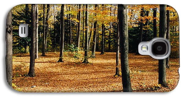 Forest Floor Galaxy S4 Cases - Chestnut Ridge Park Orchard Park Ny Usa Galaxy S4 Case by Panoramic Images