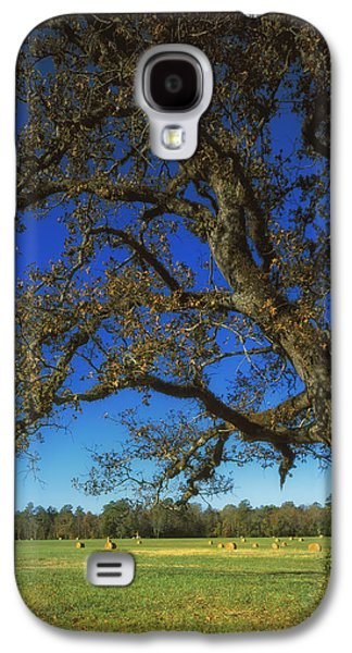 Battlefield Site Galaxy S4 Cases - Chickamauga Battlefield Galaxy S4 Case by Mountain Dreams