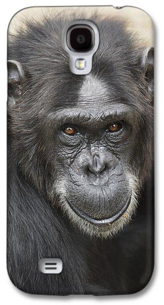 Chimpanzee Portrait Ol Pejeta Galaxy S4 Case by Hiroya Minakuchi