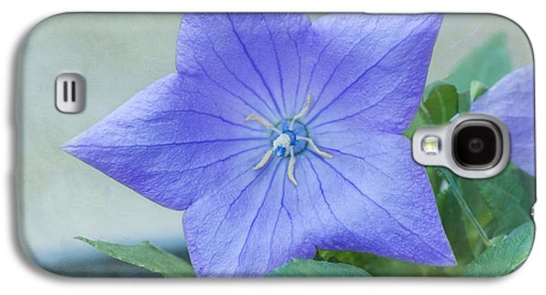 Balloon Flower Galaxy S4 Cases - Chinese Bell Flower Galaxy S4 Case by Kim Hojnacki