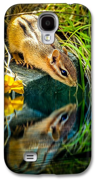 New England Galaxy S4 Cases - Chipmunk Reflection Galaxy S4 Case by Bob Orsillo