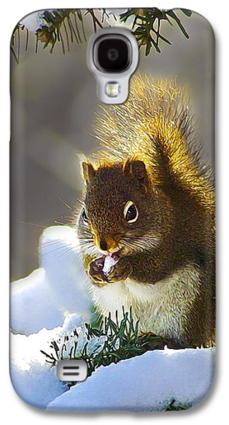 Bill Caldwell Galaxy S4 Cases - Christmas Squirrel Galaxy S4 Case by Bill Caldwell -        ABeautifulSky Photography