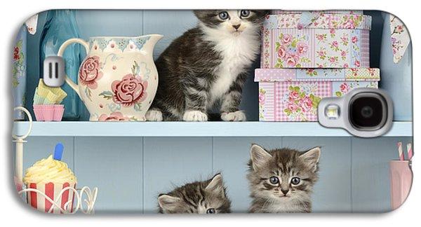 Baking Shelf Kittens Galaxy S4 Case by Greg Cuddiford