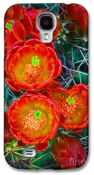 Harmonious Galaxy S4 Cases - Claret Cup Galaxy S4 Case by Inge Johnsson