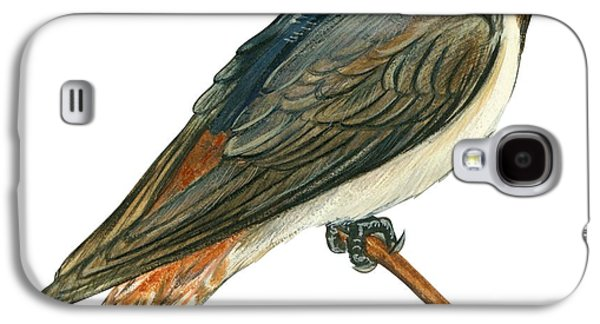 Cliff Swallow  Galaxy S4 Case by Anonymous