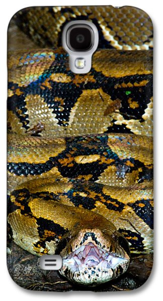 Close-up Of A Boa Constrictor, Arenal Galaxy S4 Case by Panoramic Images