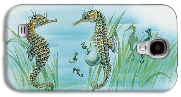 Under Water. Nature Galaxy S4 Cases - Close-up of a male sea horse expelling young sea horses Galaxy S4 Case by English School