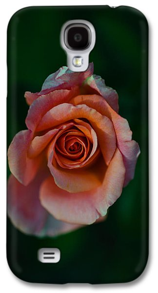 Close-up Of A Pink Rose, Beverly Hills Galaxy S4 Case by Panoramic Images