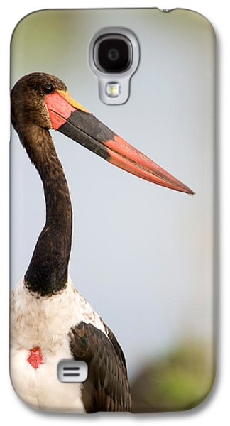 Close-up Of A Saddle Billed Stork Galaxy S4 Case by Panoramic Images