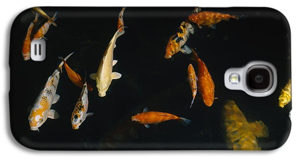 Schools Of Fish Galaxy S4 Cases - Close-up Of A School Of Fish In An Galaxy S4 Case by Panoramic Images