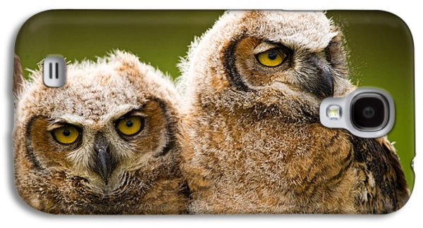 Young Birds Galaxy S4 Cases - Close-up Of A Two Great Horned Owlets Galaxy S4 Case by Panoramic Images