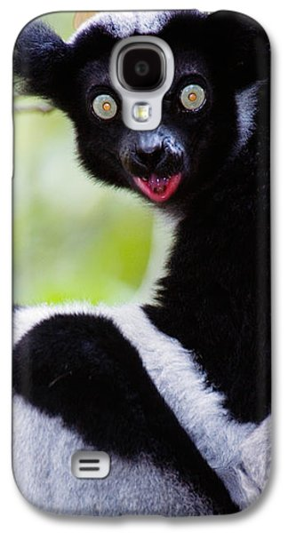 Animal Themes Galaxy S4 Cases - Close-up Of An Indri Lemur Indri Indri Galaxy S4 Case by Panoramic Images
