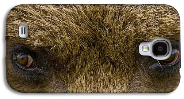 Harts Galaxy S4 Cases - Close Up Of Brown Bears Eyes In Hallo Galaxy S4 Case by Cathy Hart