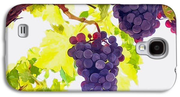 Malbec Galaxy S4 Cases - Close Up of Red Wine Grapes Hanging on the Vine on a Sunny Day Galaxy S4 Case by Lanjee Chee