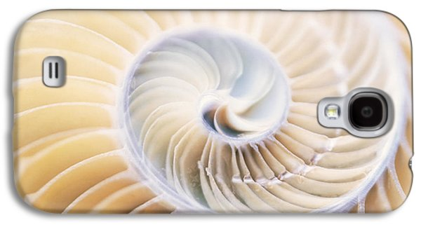 Designs In Nature Galaxy S4 Cases - Close Up Of Shell Galaxy S4 Case by Panoramic Images