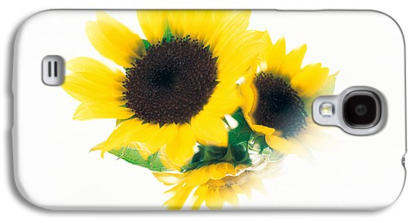 Studio Photography Galaxy S4 Cases - Close Up Of Sunflower Head Galaxy S4 Case by Panoramic Images
