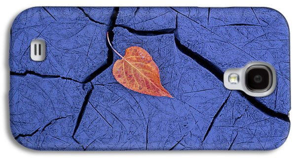 Mud Season Galaxy S4 Cases - Closeup Of Autumn Colored Cottonwood Galaxy S4 Case by Carl R. Battreall