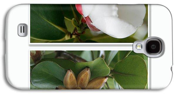Autographed Art Galaxy S4 Cases - Clusia rosea - Clusia major - Autograph Tree - Maui Hawaii Galaxy S4 Case by Sharon Mau