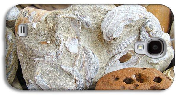 Agate Beach Oregon Galaxy S4 Cases - Coastal Shell Fossil Art Prints Rocks Beach Galaxy S4 Case by Baslee Troutman