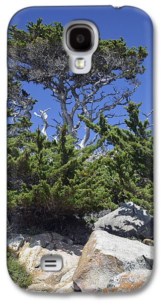 Point Lobos State Galaxy S4 Cases - Coastal Trees in Californias Point Lobos State Natural Reserve Galaxy S4 Case by Bruce Gourley