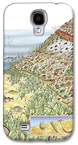 Plankton Galaxy S4 Cases - Coastal Wildlife, Artwork Galaxy S4 Case by Luis Montanya/marta Montanya/sciencephotolibrary