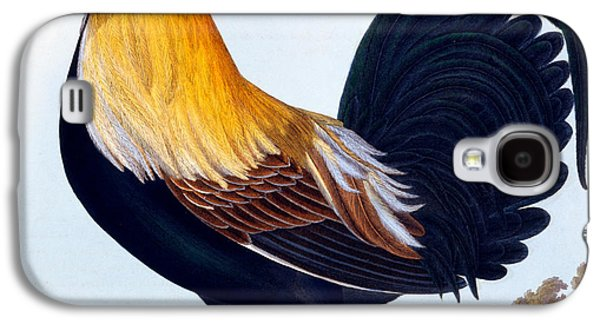Talons Paintings Galaxy S4 Cases - Cock Galaxy S4 Case by CLE Perrott