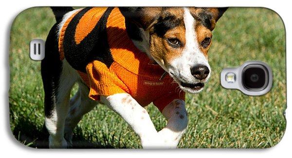 Puppy Digital Galaxy S4 Cases - Cody Galaxy S4 Case by Bruce Nikle
