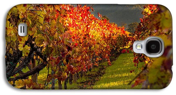 Landscapes Photographs Galaxy S4 Cases - Color On the Vine Galaxy S4 Case by Bill Gallagher
