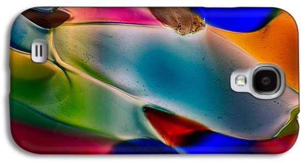 Puppy Glass Art Galaxy S4 Cases - Color Wall Galaxy S4 Case by Omaste Witkowski