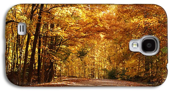 Colorful Canopy Galaxy S4 Case by Sandy Keeton