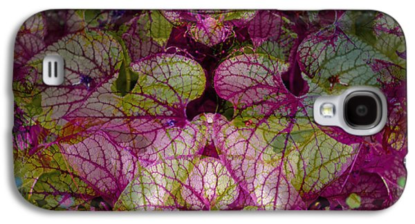 Nature Abstract Pyrography Galaxy S4 Cases - Colorful Leaf Galaxy S4 Case by Eiwy Ahlund