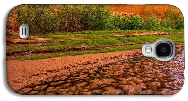 Holes In Sandstone Galaxy S4 Cases - Colorful Streambed - Coyote Gulch - Utah Galaxy S4 Case by Gary Whitton