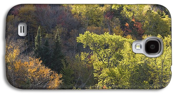 Autumn Landscape Photographs Galaxy S4 Cases - Colorful Trees In Maine Forest Galaxy S4 Case by Keith Webber Jr