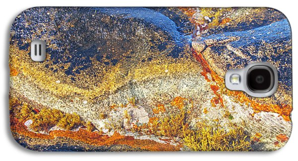 Alga Galaxy S4 Cases - Colors on rock I Galaxy S4 Case by Heiko Koehrer-Wagner