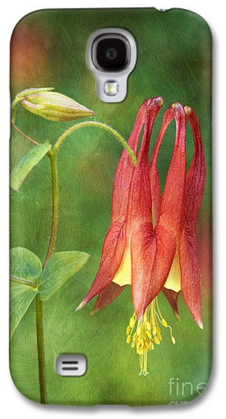 Indiana Flowers Galaxy S4 Cases - Columbine - D008453-a Galaxy S4 Case by Daniel Dempster