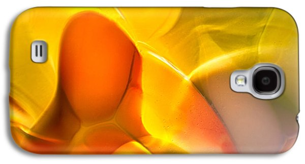 Nature Abstract Glass Art Galaxy S4 Cases - Companionship Galaxy S4 Case by Omaste Witkowski