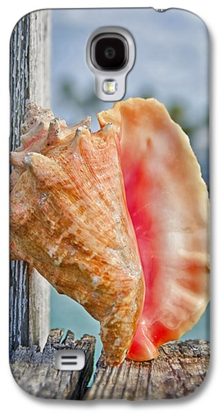 Concept Photographs Galaxy S4 Cases - Conch Shell on Dock Galaxy S4 Case by Rashad Penn